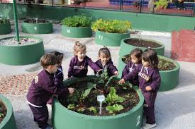 Projeto de Meio Ambiente do Colégio Stocco